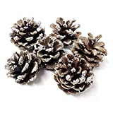 Homeford Decorative Ice Austrian Pine Cones, 1-1/2-Inch, 6-Count