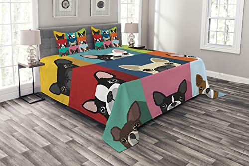 Boston Terrier Portrait - Ambesonne Boston Terrier Bedspread, Minimalist Colorful Assortment of Terrier Portraits Multiple Variations, Decorative Quilted 3 Piece Coverlet Set with 2 Pillow Shams, Queen Size, Multicolor