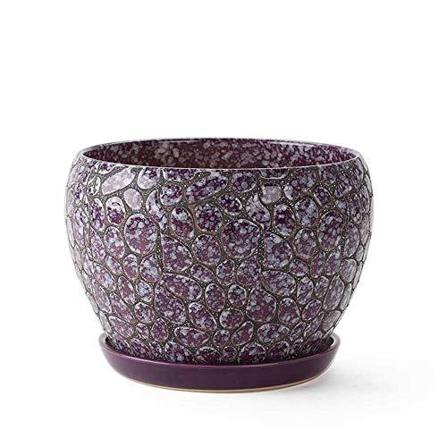(Medium Purple with Tray Green Flower Pot Container, Flower Pots Indoor, Flower Pot Saucer)