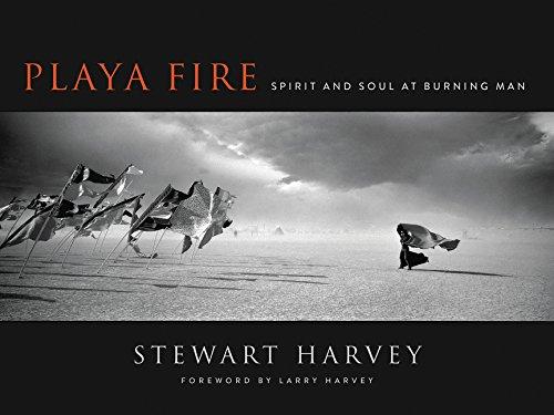 Playa Fire: Spirit and Soul at Burning Man ()
