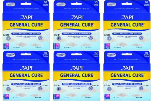 API General Cure Powder Packets, 60ct (6 x 10ct) - Import It All