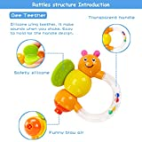 GOODWAY Rattle and Teether Baby Toys 3-6 Months, 10