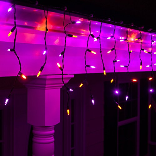 Wintergreen Lighting Halloween Mini LED Lights on Halloween Hanging Lights LED, Purple and Orange Lights on Black Wire, Fun House Halloween Decorations (70 Icicle -
