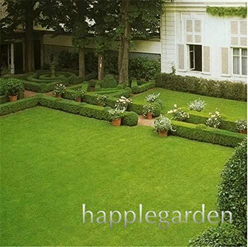 Go Garden Bonsai 500 Unidades Raras Hierba Bonsai, Golf ...