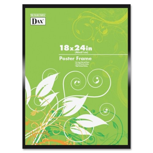 Burnes Metal Poster Frames (DAXN1894W1T)