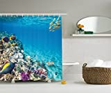 Fish Shower Curtains Bath Accessory Sets Ambesonne Ocean Decor Collection, Clear Underwater Sea Animal World with Corals and Tropical Fishes and a Stingray Egyptian Sea Picture, Polyester Fabric Shower Curtain, 75 Inches L, Aqua Blue Yellow