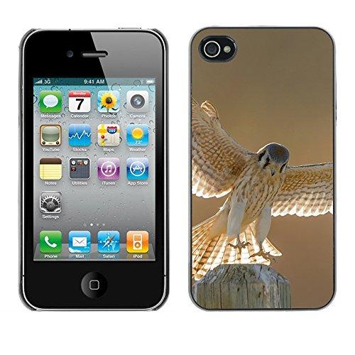 Premio Sottile Slim Cassa Custodia Case Cover Shell // F00004950 la faune aviaire // Apple iPhone 4 4S 4G