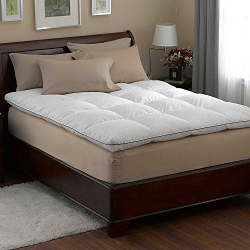 AERii Pacific Coast Luxe Loft Feather bed with FREE Pacific Coast Spring Air Won't Go Flat Pillow - Mattress Pacific Pad Coast