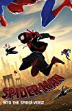 Trends International Marvel Comics Movie Man: Enter The Spider-Verse-Dive Mount Bundle Wall Poster, 22.375' x 34', Multi