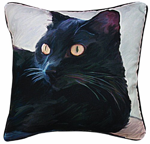 Manual Black Cat Portrait Paws and Whiskers Decorative Square Pillow, 18-Inch ()