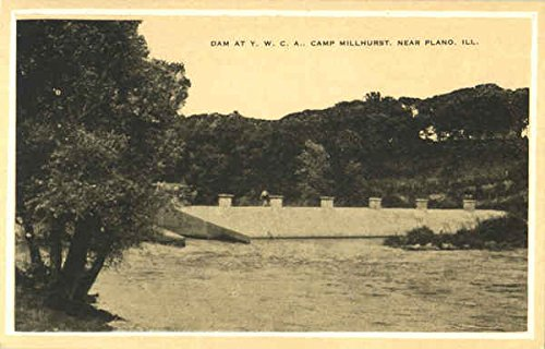 Dam At Y. W. C. A. Camp Millhurst Plano, Illinois Original Vintage Postcard