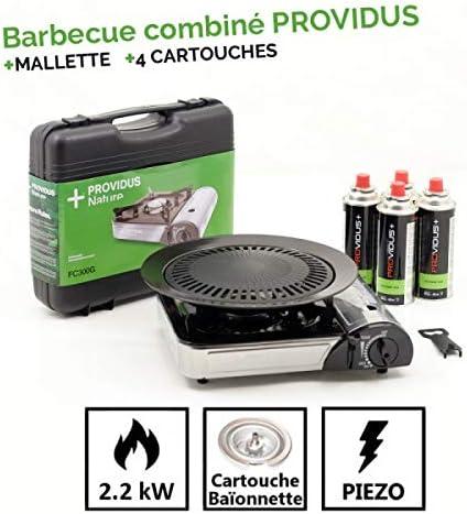 Providus - Hornillo/barbacoa de gas 2 en 1 de 2,2 kW ...