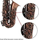 ammoon Alto Saxophone, Eb E-flat Sax Antique Finish