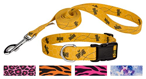 Country Brook Design | Busy Bee Deluxe Dog Collar & Leash - Large]()
