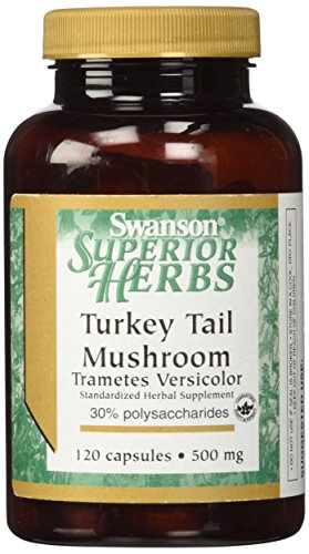 Swanson Turkey Tail Mushroom 500 mg 120 Caps