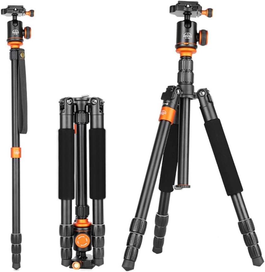 17.6 Lbs Conversion Monopod Quick Release Plate 360 /° Panoramic Ball Head Aluminum Alloy Cameras Tripods Load 8Kg XIAOXIAO 144Cm Portable Travel Tripod