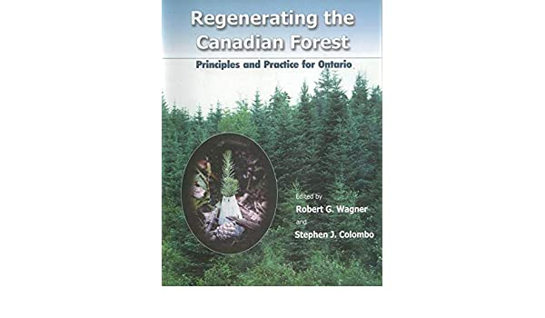 Regenerating the Canadian Forest