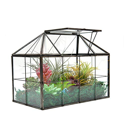 "XCMAN Large Tabletop Greenhouse House Shape Glass Terrarium – Succulent Plant Terrarium Clear Glass Terrarium 9.3""X7.5""X5.3"""
