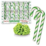 Accoutrements Novelty Christmas Candy Cane Gag Gift - Wasabi Flavor - 6 Per Box