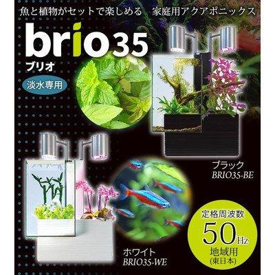 魚と植物がセットで楽しめる 家庭用アクアポニックス brio35(ブリオ) 50Hz地域用(東日本) 魚と植物がセットで楽しめる 家庭用アクアポニックス ブラックBRIO35-BE( 画像はイメージ画像です お届けの商品はブラックBRIO35-BEのみとなります) B073PYYMYZ