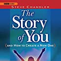 The Story of You (and How to Create a New One) Audiobook by Steve Chandler Narrated by Steve Chandler