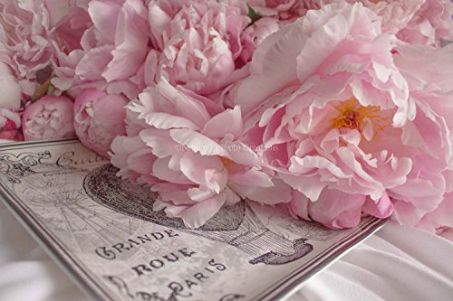 Two Pack Rose Peony