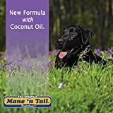 Mane 'n Tail New Ultimate Gloss Conditioner 32