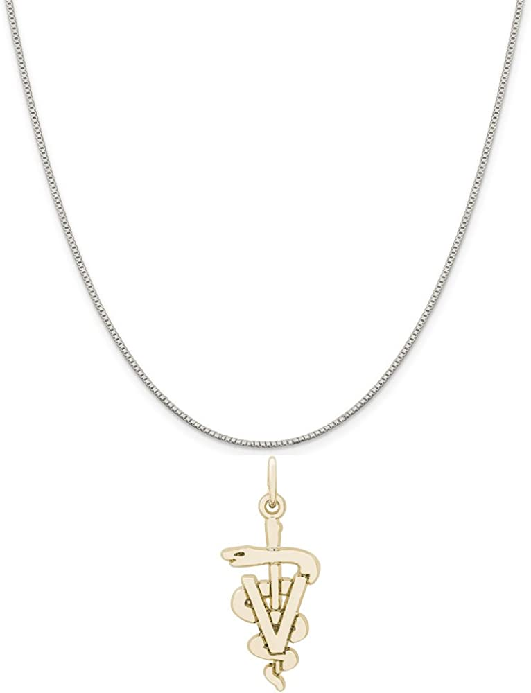 Rembrandt Charms Two-Tone Sterling Silver Veterinarian Charm on a Sterling Silver 16 Box or Curb Chain Necklace 18 or 20 inch Rope