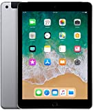 Apple iPad 9.7in 6th Generation WiFi + Cellular (128GB, Space Gray)