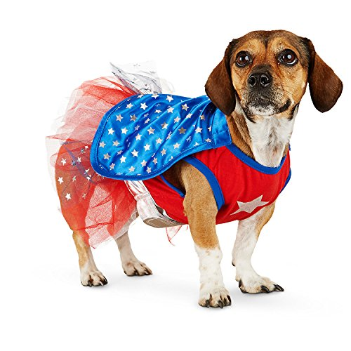 Petco Halloween Superhero Girl Dog Costume, Medium - Petco Halloween Costumes