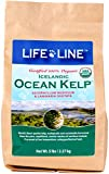 Life Line Pet Nutrition Organic Ocean Kelp Supplement for Skin & Coat, Digestion, Teeth & Gums in Dogs & Cats, 5-Pound