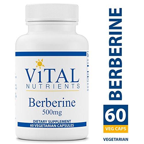 Vital Nutrients - Berberine 500 mg - Vegan Formula - Promotes Healthy Blood Sugar Levels, Regulates Bowel Function, Helps Maintain Normal Triglyceride Levels - 60 Vegetarian Capsules per Bottle