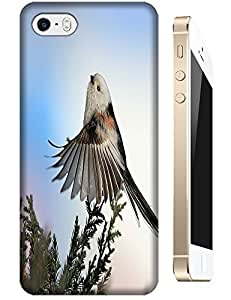 Small Bird singing dancing on the tree cell phone cases for Apple Accessories iPhone 5/5S