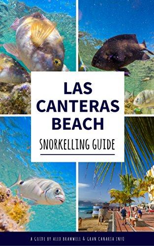 Las Canteras: Snorkelling Guide: Explore Gran Canaria's top underwater spot like a - Cantera The