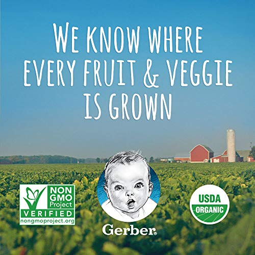 51r9L91JlgL - Gerber Organic 2nd Foods, Fruit & Veggie Variety Pack Pureed Baby Food, 3.5 Ounce Pouch, 18 Count (Packaging May Vary)