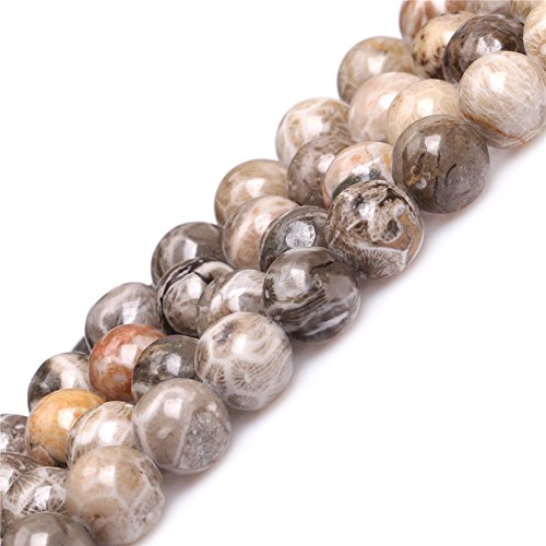 Fossil Coral Jasper Beads for Jewelry Making Natural Gemstone Semi Precious 10mm Round Gray 15