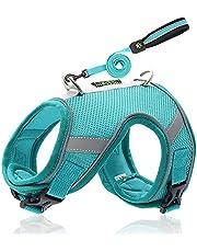 Crea BIRBA-harnas voor katten en kleine honden, met riem, verstelbaar, reflecterend, ademend, zacht, met draagtas.
