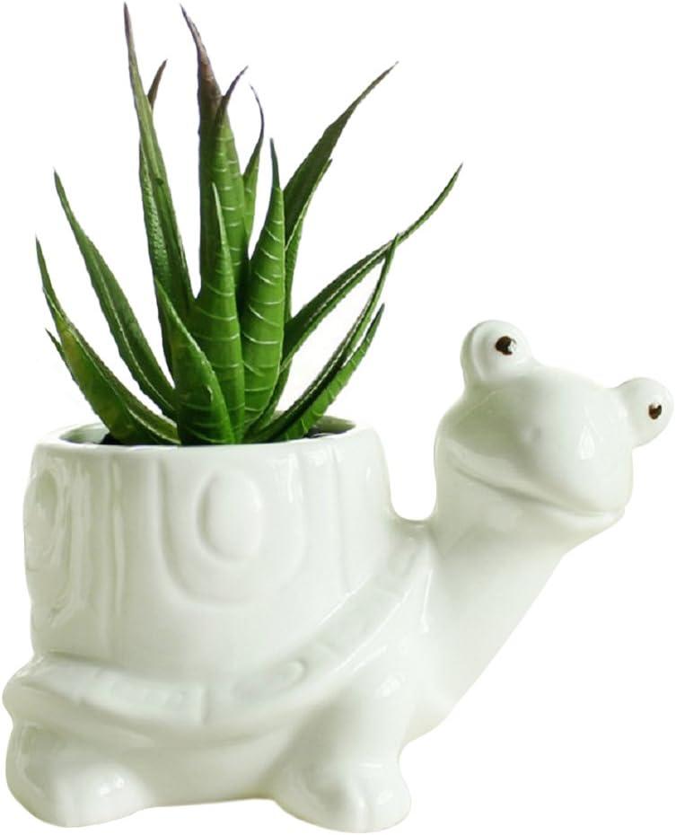GeLive Tortoise Succulent Planter Turtle Plant Pot Animal Fun Vase Window Box Cute Home Decoration