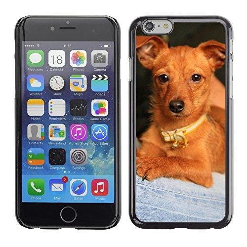 """Bild Hart Handy Schwarz Schutz Case Cover Schale Etui // M00133813 Puppy Dog Mascot // Apple iPhone 6 PLUS 5.5"""""""