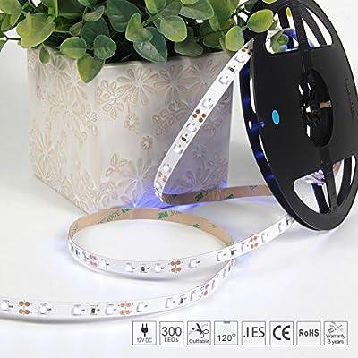 Signcomplex LED Strip Light Flexible Non-waterproof Ribbon Tape Rope LED Light Bar SMD 3528 LEDs 5m 12V DC for Garden Home Car Xmas Indoor DIY Party Decoration Lighting