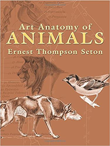 Art Anatomy Of Animals Dover Anatomy For Artists Ernest Thompson