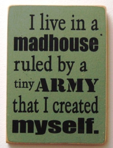 - I live in a madhouse ruled by a tiny army that I created myself.