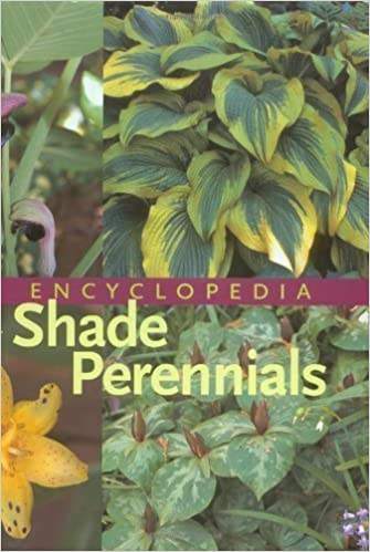 An Encyclopedia Of Shade Perennials 1st First Edition By W George
