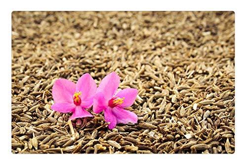 Tree26 Indoor Floor Rug/Mat (23.6 x 15.7 Inch) - Orhid Flower Cumin Closeup Spice Grains