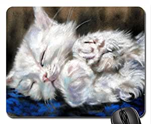 By Paul Knight Cute Cool Decorative Design Animal Cat Mousepad Rainbow Designs