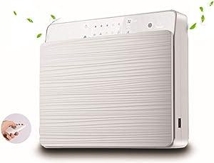 LNLN Air Purifier Wall-Mounted/Desktop/Home