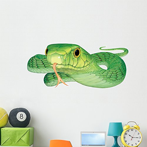 Green Mamba Snake Wall Decal by Wallmonkeys Peel and Stick Graphic (48 in W x 25 in H) - Wall Snake Decals