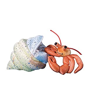 how to make hermit crab toys