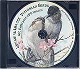 Victorian Birds, Lunagirl Images, 1934688118