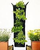 Delectable Garden 7 Pocket Waterproof INDOOR Hanging Vertical Garden Wall Planter For Home Decoration Review